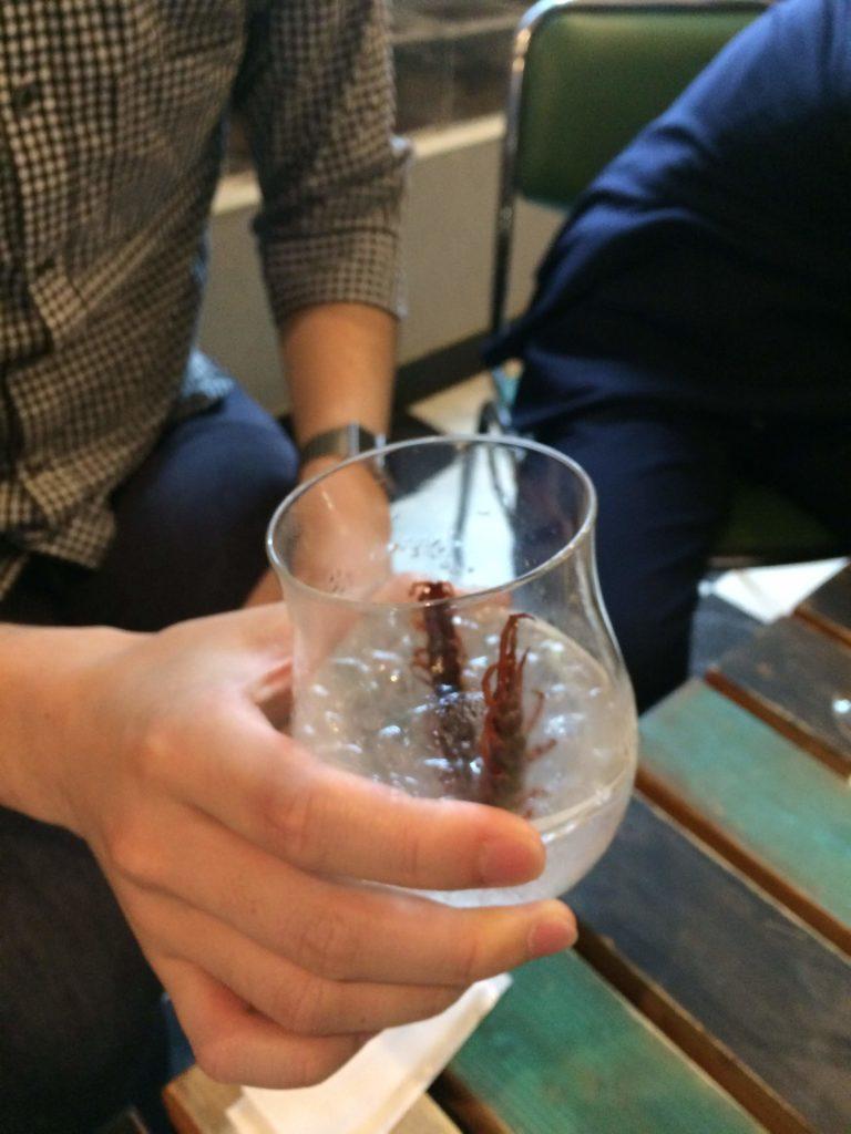大阪<なんば>でゲテモノが食える。爬虫類カフェ「ROCK STAR」のムカデトッピング