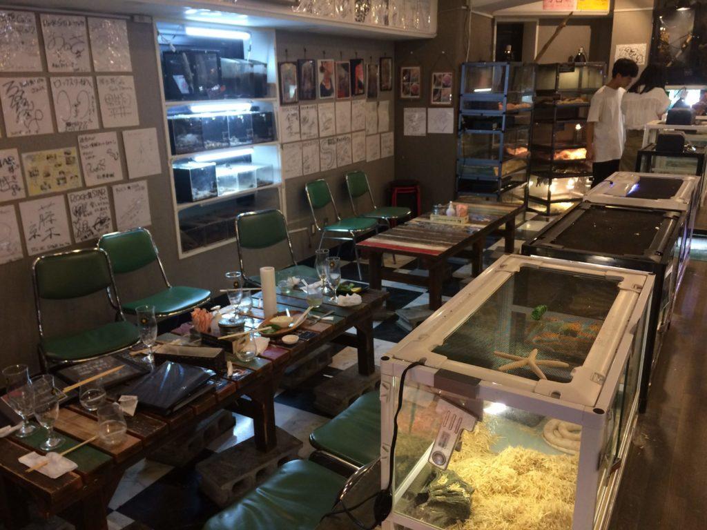 大阪<なんば>でゲテモノが食える。爬虫類カフェ「ROCK STAR」の店内