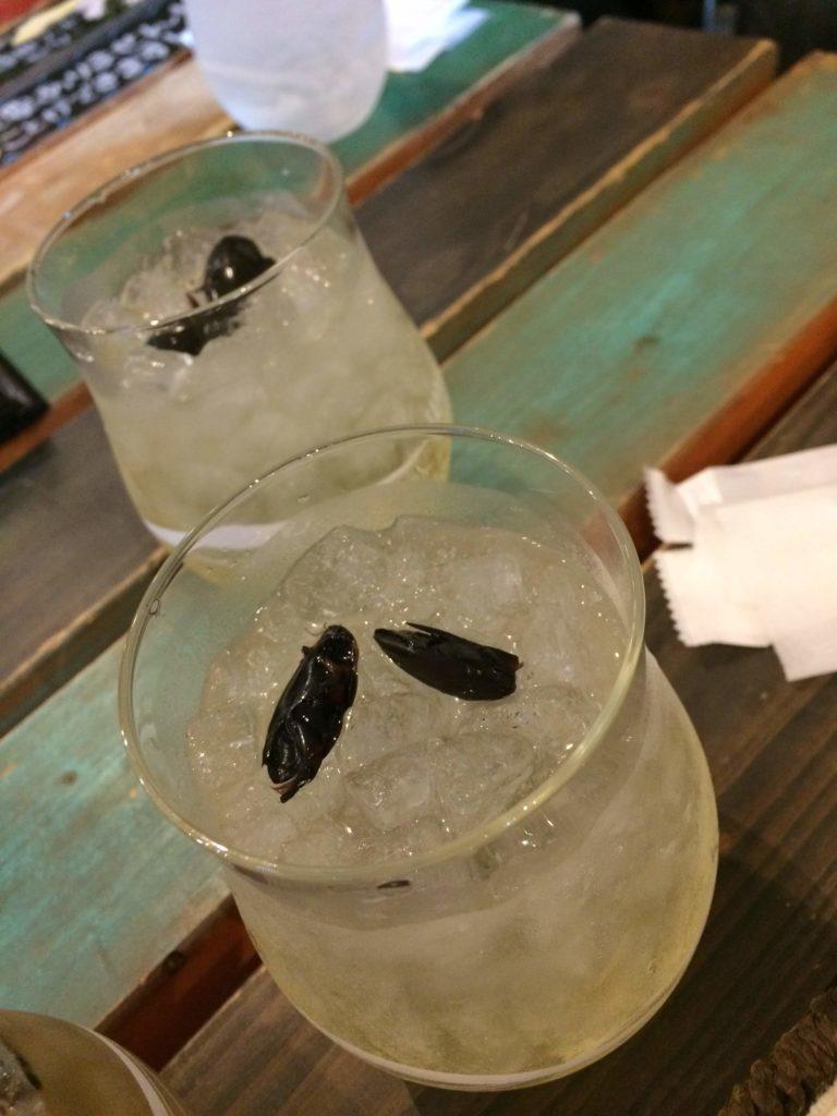 大阪<なんば>でゲテモノが食える。爬虫類カフェ「ROCK STAR」のゲンゴロウ酒