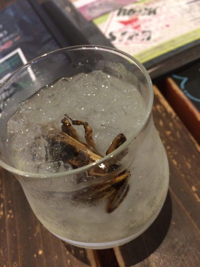 大阪<なんば>でゲテモノが食える。爬虫類カフェ「ROCK STAR」のタガメ酒